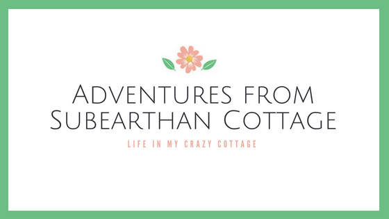 Adventures from SubEarthan Cottage